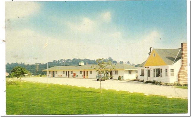 siesta motel postcard